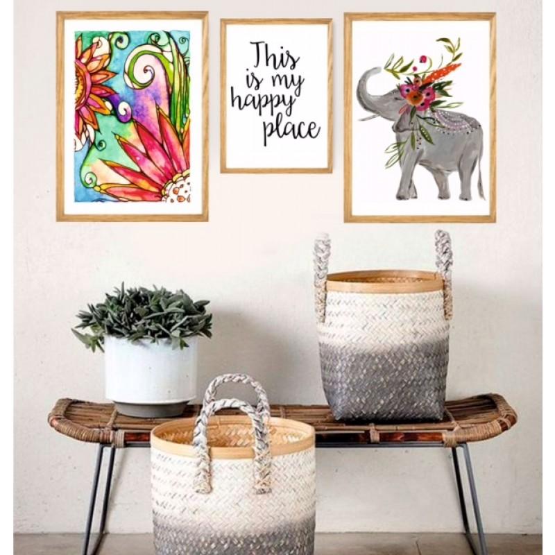 Set Elefante